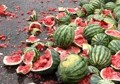watermelons smashed 120x84